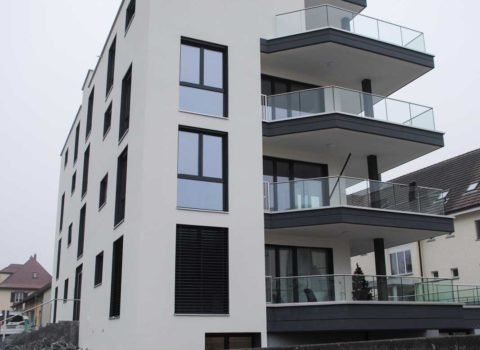Neubau MFH <br/> Sorenbühlweg Wohlen