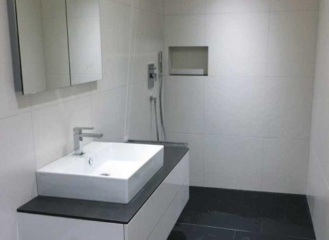 Umbau Badezimmer <br/> Wädenswil